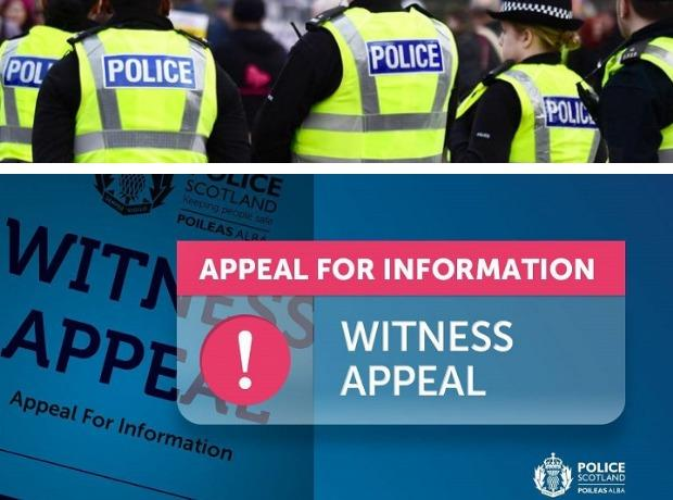 Witness Appeal - Canva